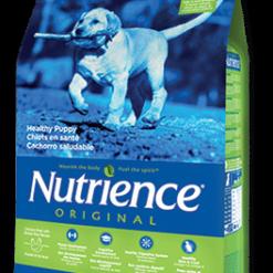 נוטריאנס מזון לכלבים וחתולים Nutrience