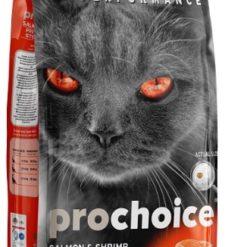 """מזון יבש פרו צ'ויס לחתול בוגר בטעם סלמון ושרימפס בחיפה נווה שאנן חניתה דוגס 2 ק""""ג 15 ק""""ג"""