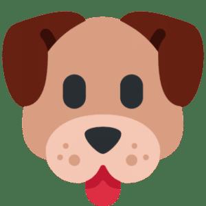 favicon dog food