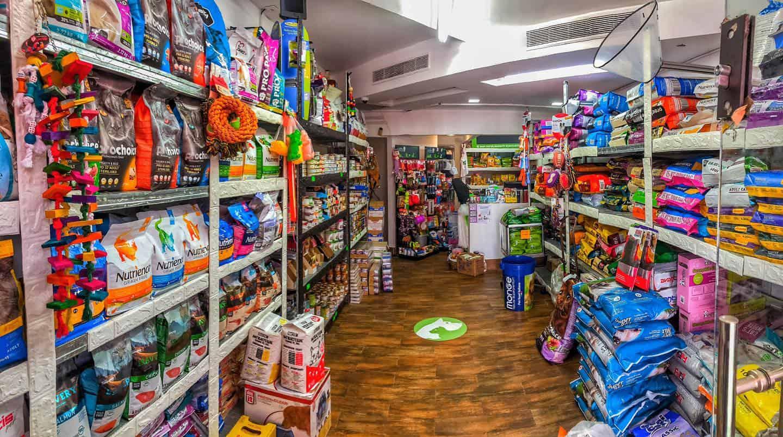 חנות חיות בחיפה נווה שאנן חניתה דוגס